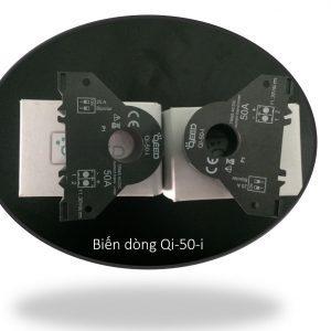 Biến dòng Qi-50-i