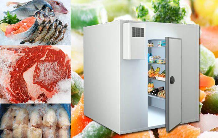 Pt1000 thường dùng trong kho lạnh